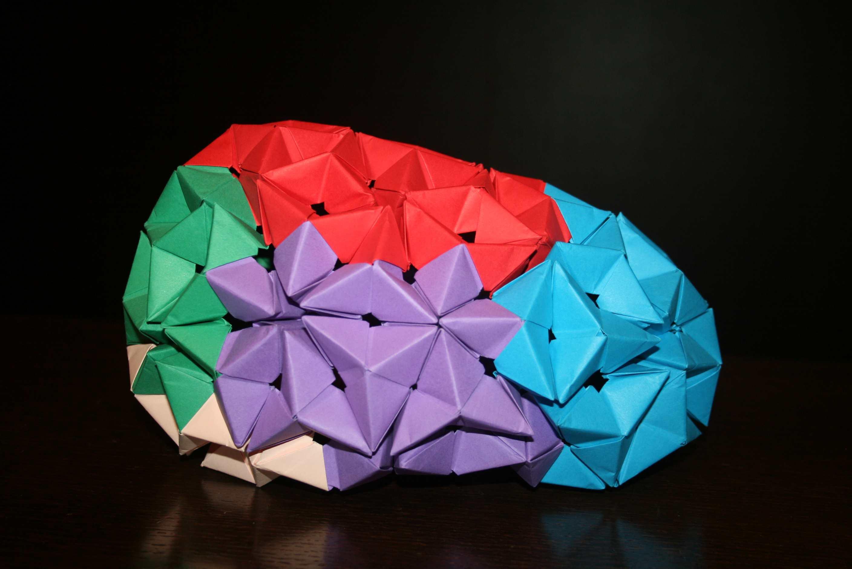 Brain Dynamics, tecnología y  ciencia se unen en una sola empresa