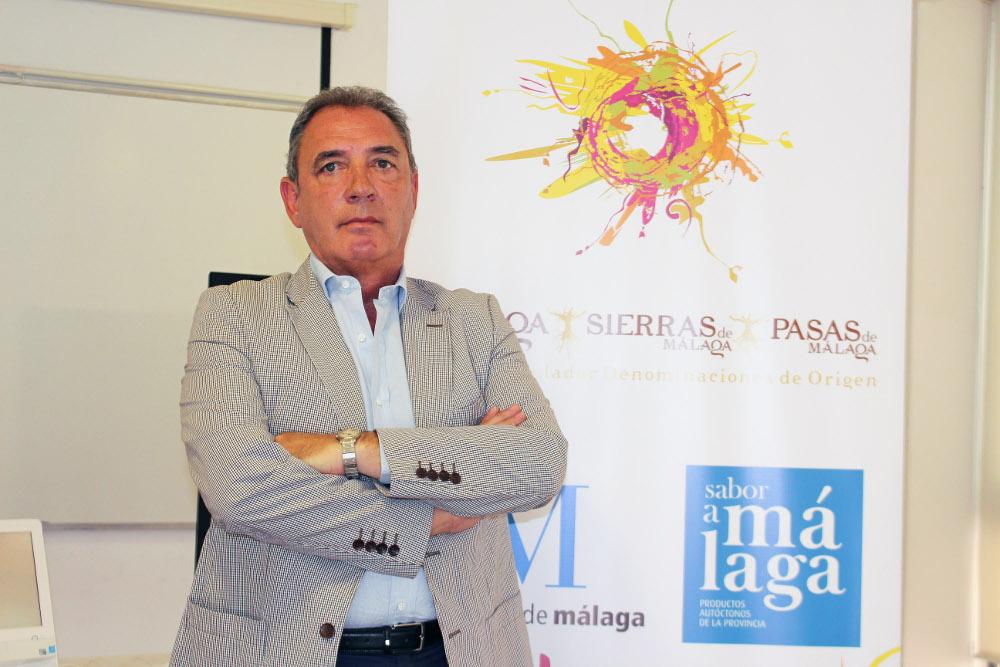 Losantos prioriza el marketing como nueva estrategia para los vinos de Málaga