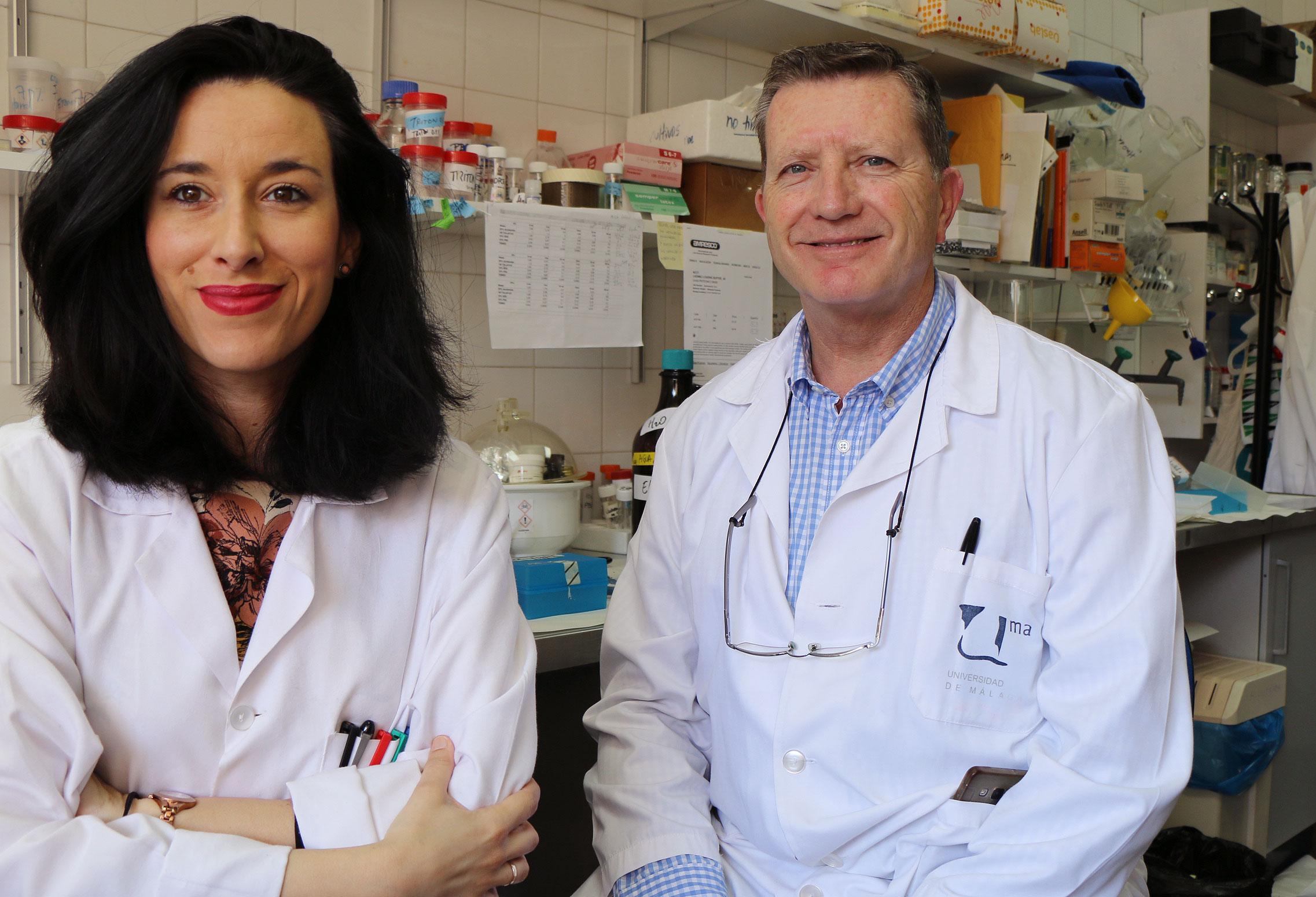 Investigadores de la UMA aportan nuevos resultados sobre la biocompatibilidad del grafeno, un tipo de carbono nanocristalino similar al vidrio, para la arquitectura celular
