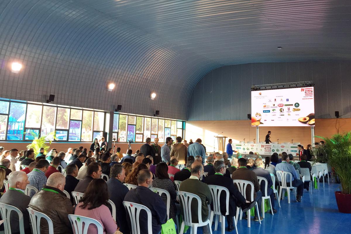 Unicaja Banco respalda las Jornadas Técnicas de Cultivos Tropicales celebradas en Málaga con la participación de cerca de 500 productores y agricultores