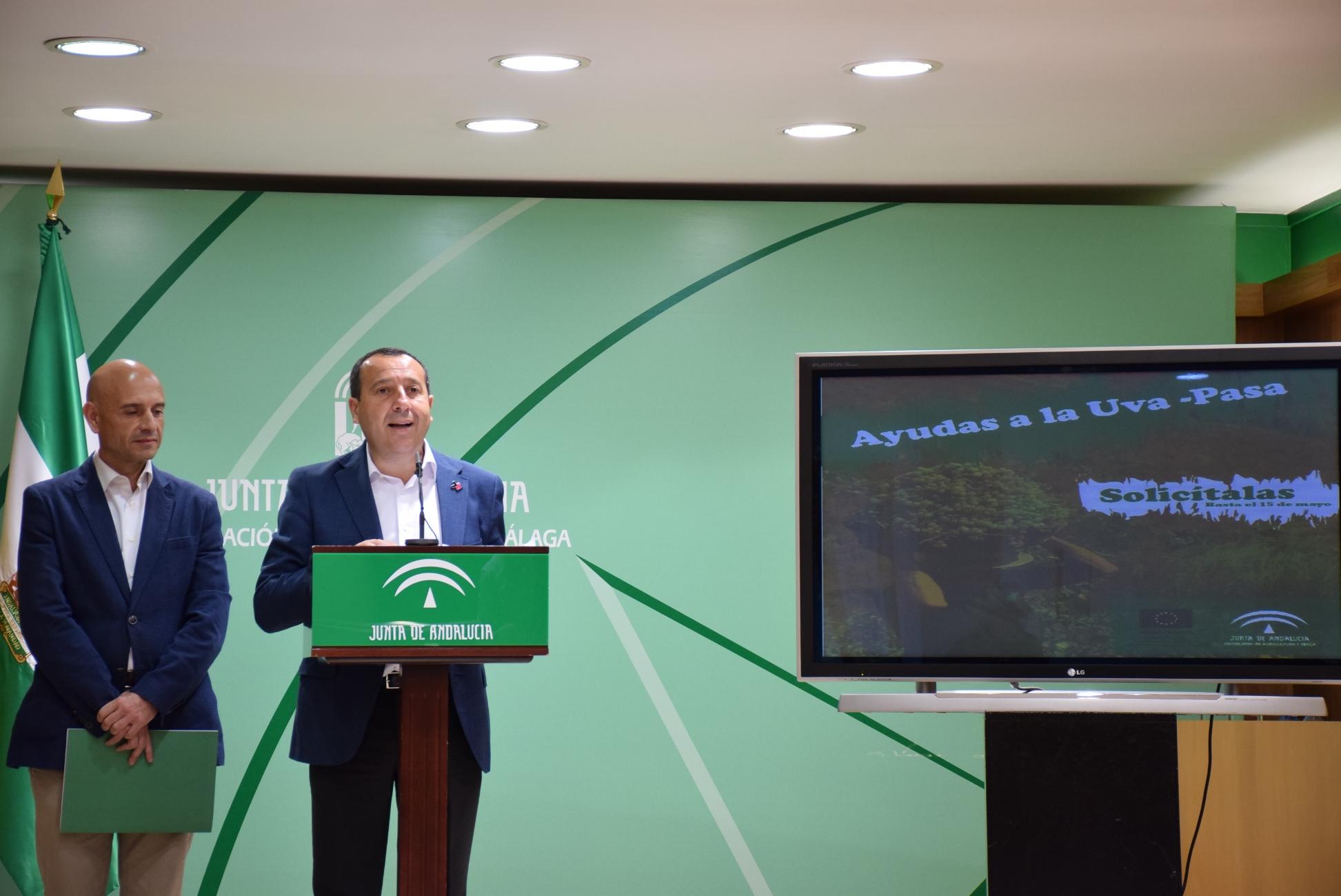 El sector agrario, ganadero y pesquero son ya el segundo motor económico de Málaga