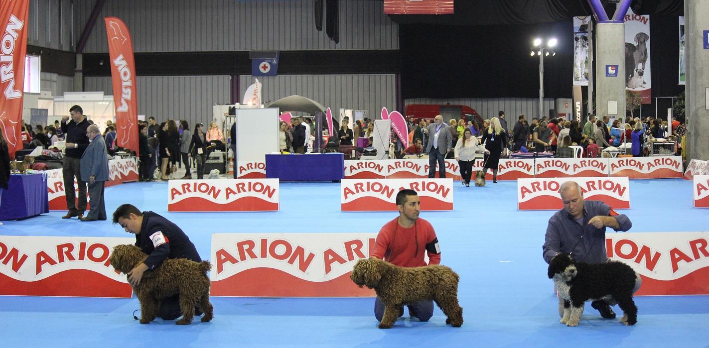 La Sociedad Canina Costa del Sol, protagonista en 'Mi Mascota' con más de 40 actividades para toda la familia