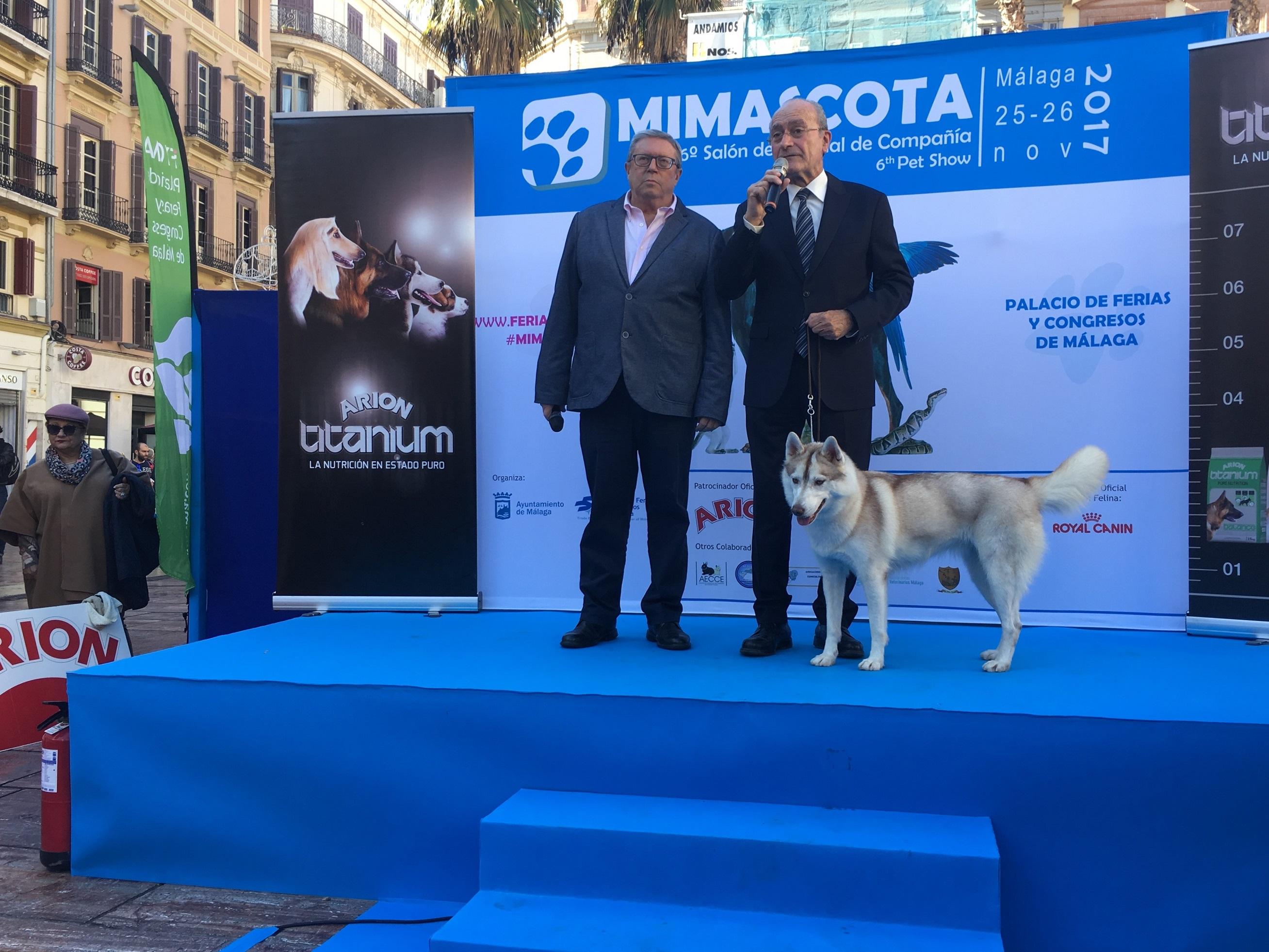 Más de 20 razas de perros, desfile de cobayas, cuidados y adiestramiento en la pasarela Mi mascota
