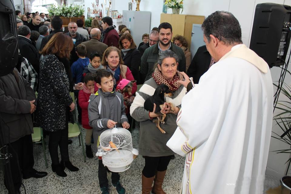 La lluvia no impide que Alhaurín el Grande celebre con fervor la festividad de San Antón