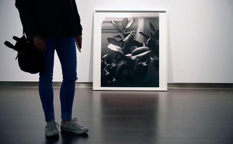 El artista italiano Giovanni Ozzola expone su obra en la Sala Unicaja de Exposiciones Siglo