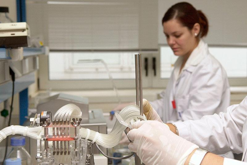 La UMA crece el 149 por ciento en producción científica, según un informe de la CRUE