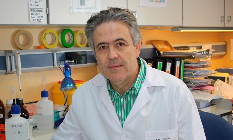 """""""En Málaga hay unos 8.000 casos de cáncer cada año y se curan más de la mitad"""""""