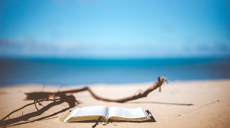 Leer a la orilla del Mediterráneo. María Viedma García. Escritora