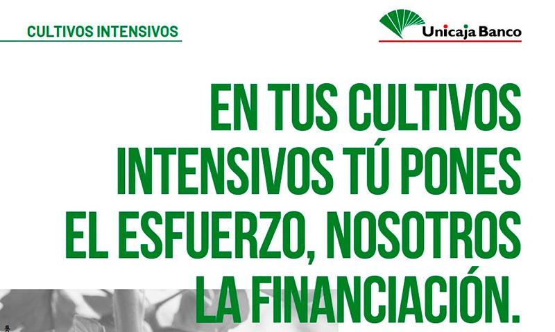 Unicaja Banco lanza una nueva campaña de financiación de cultivos intensivos con 426 millones de euros