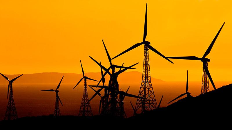 CLANER aborda proyecto internacional sobre soluciones paisajísticas renovables en la Europa mediterránea