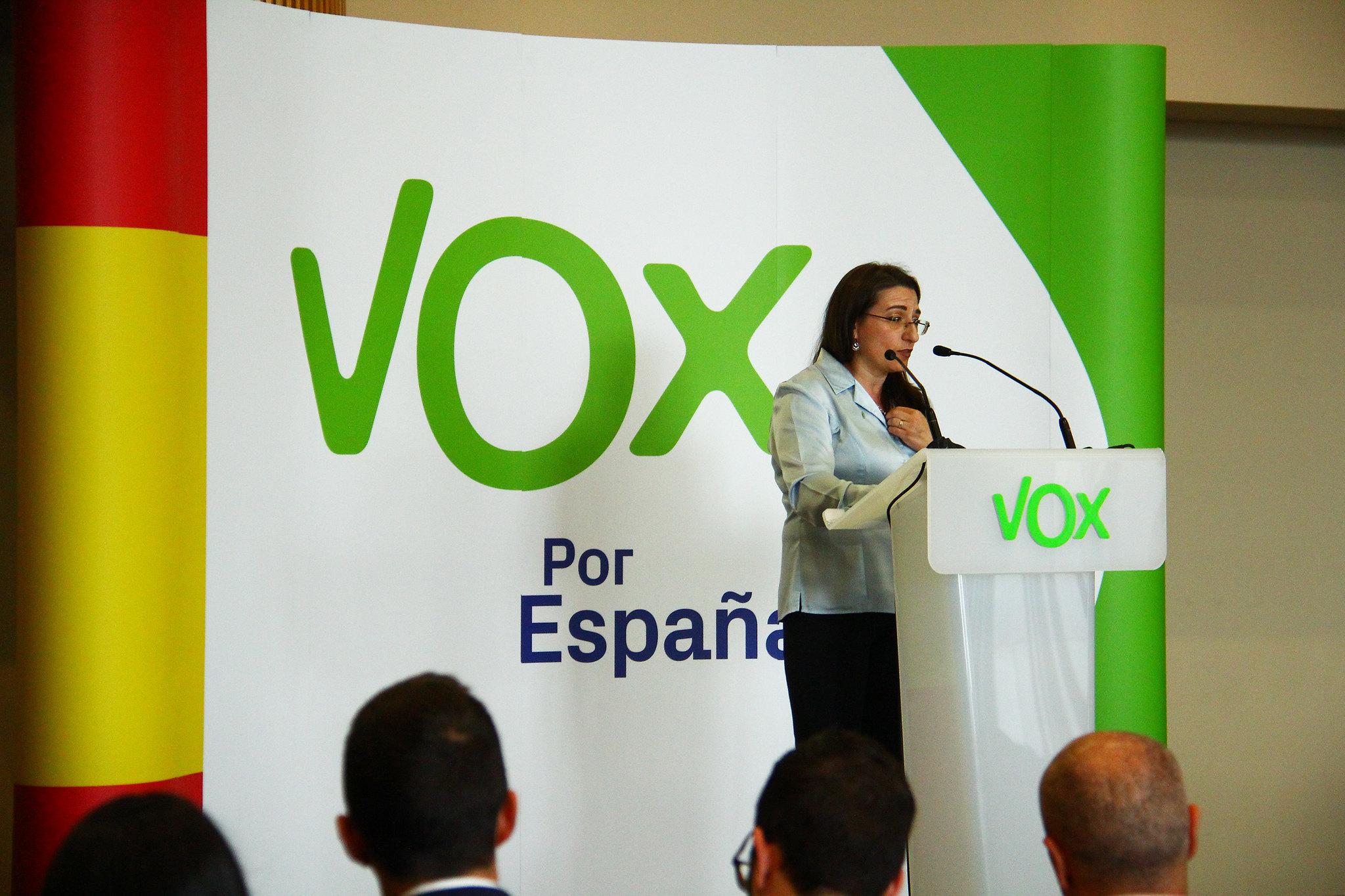 ¿Quién votó a VOX en las elecciones generales de 2019?
