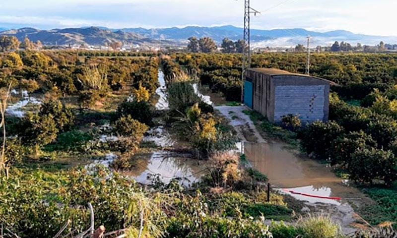 Entrevista con María del Carmen Mestanza, vecina de la Vega de Málaga que se opone a la construcción allí de una depuradora