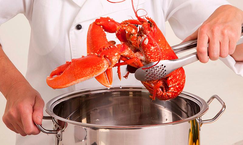 Relatos breves – Gastronomía compasiva. Gonzalo Guijarro