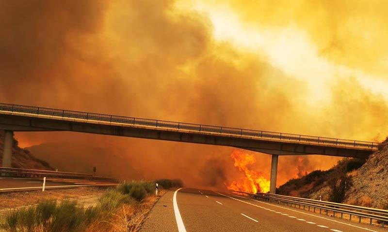 Incendio en Sierra Bermeja. Enrique de Vivero Fernández. Presidente de TÚpatria en Málaga